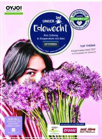 EDEWECHT_Aufgabe_3_2021_low-pdf